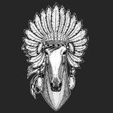Paard, hoss, ridder, ros, courser het Traditionele etnische Indische van de de medicijnmanhoed van het bohohoofddeksel Stammen Pl royalty-vrije illustratie