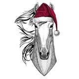 Paard, hoss, ridder, ros, courser van de Kerstmiskerstman van de Kerstmisillustratie de Wilde dierlijke dragende hoed van de de h vector illustratie