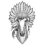 Paard, hoss, ridder, ros, courser Wild dier die indiat hoed met de stijl uitstekende gravure van verenboho dragen stock illustratie