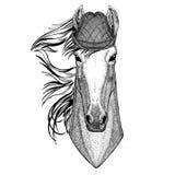 Paard, hoss, ridder, ros, courser Wild dier die van de hoedenoktoberfest van Tirol van het de herfstfestival het Bier fest illust stock illustratie