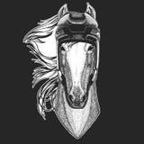 Paard, hoss, ridder, ros, courser Wilde dierlijke dragende hockeyhelm Druk voor T-shirtontwerp stock illustratie