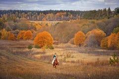 Paard-jaagt met ruiters in het berijden gewoonte Stock Foto's