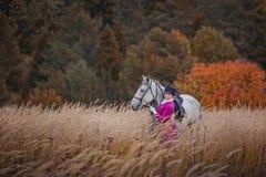 Paard-jaagt met ruiters in het berijden gewoonte Stock Afbeelding