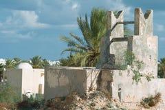 Paard met Djerba Stock Afbeelding