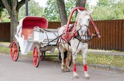 Paard met een vervoer voor het lopen rond de stad van Suzdal stock foto's