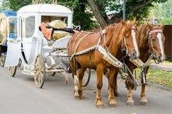 Paard met een vervoer voor het lopen rond de stad van Suzdal royalty-vrije stock foto
