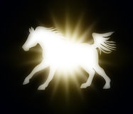 Paard met een vlammende ster op donkere achtergrond Stock Afbeelding
