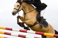Paard met jokey die over de omheining, detail springt royalty-vrije stock foto's