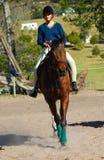 Paard met ruiter Stock Foto's