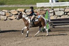Paard met ruiter Royalty-vrije Stock Foto's