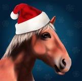 Paard met Santa Claus Hat Stock Afbeeldingen