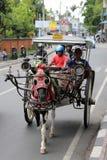 Paard met Vervoer in Bali Stock Foto