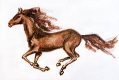 Paard in motie Royalty-vrije Stock Fotografie