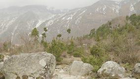 Paard op de weg onder de bergen in Nepal Trek van de Manaslukring gebied stock footage