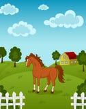 Paard op Landbouwbedrijf Royalty-vrije Stock Afbeelding