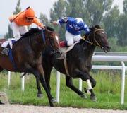 Paard Racing Royalty-vrije Stock Afbeelding