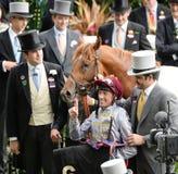 Paard Racing stock fotografie