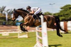 Paard Rider Speed Blur Jump stock foto