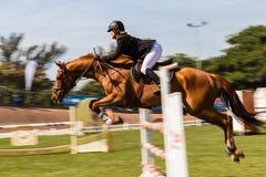 Paard Rider Speed Blur Jump Nationals stock foto's