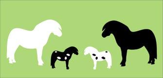 Paard/Shetland poney   stock illustratie