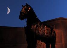 Paard van Troje bij nacht Royalty-vrije Stock Foto