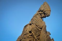 Paard van Troje en blauwe hemel Stock Afbeelding