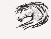 Paard zwart-wit portret Royalty-vrije Stock Afbeelding