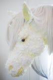 Paardbloem Stock Afbeeldingen