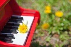 Paardebloem en piano Royalty-vrije Stock Foto's