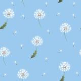 Paardebloem naadloos patroon op blauwe achtergrond stock illustratie