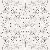 Paardebloempatroon Stock Afbeelding