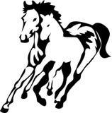 Paarden royalty-vrije illustratie