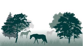Paarden in bosillustratie Stock Foto