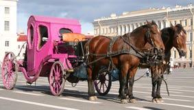 Paarden die roze vervoer trekken Stock Foto's