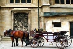 Paarden en bus Royalty-vrije Stock Afbeelding