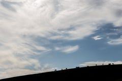 Paarden en grote hemel Stock Afbeeldingen