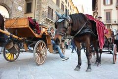 Paarden gebruikt zoals slepende voertuigen om toeristen op houten vervoer te vervoeren stock fotografie