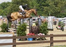 Paarden - Hunter Jumper Classic Cleveland, Ohio Royalty-vrije Stock Afbeeldingen
