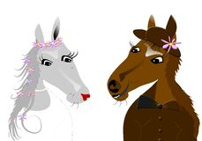 Paarden, huwelijk Stock Afbeeldingen