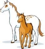 Paarden - merrie en veulen, vector Royalty-vrije Stock Foto's