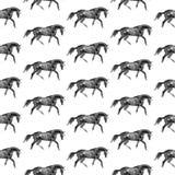 Paarden naadloze achtergrond Stock Foto's