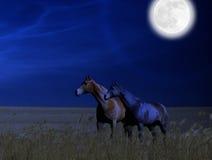 Paarden op een Tarwegebied bij Volle maan Stock Foto's