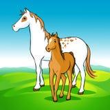 Paarden op weide - merrie en veulen royalty-vrije illustratie