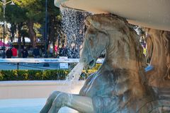 Paarden op witte marmeren fontein royalty-vrije stock foto