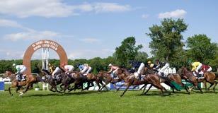 Paardenkoers Royalty-vrije Stock Afbeelding