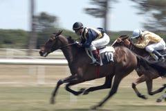 Paardenkoers Royalty-vrije Stock Foto