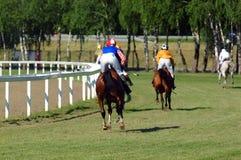 Paardenkoers Stock Foto's