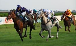 Paardenkoers - Heiligendamm 01 Royalty-vrije Stock Afbeelding