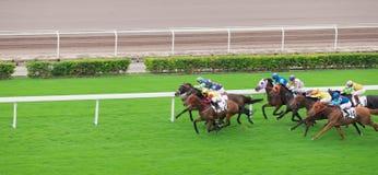 Paardenkoers, jockey stock afbeelding