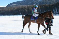 Paardenkoers op Sneeuw royalty-vrije stock foto